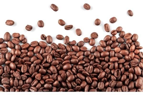 coffee and brain disease